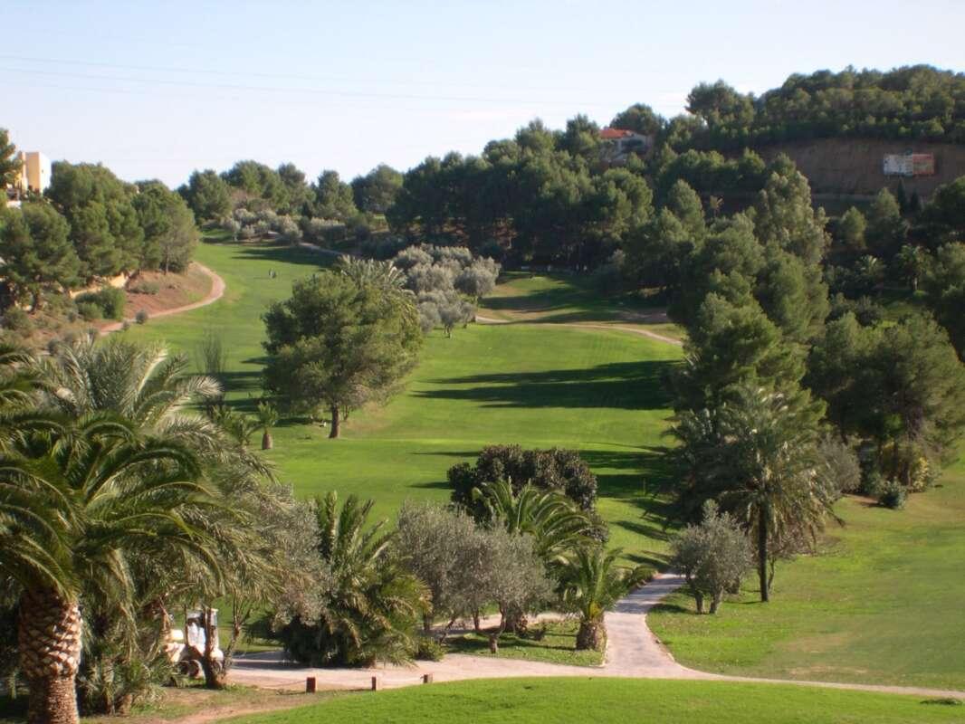 golf don cayo 010