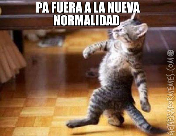 xdfhsw98qnc8tmqqh28bqmkob89cyjpb979r3yqukstmycfz1f92hv8exrjm8704.jpg.pagespeed.ic.imagenes memes fotos frases graciosas chistosas divertidas risa chida español whatsapp facebook